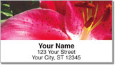 Bulone Floral Address Labels