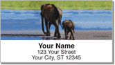Madaras Safari Address Labels