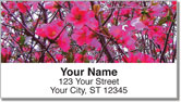 Southern Daze Address Labels