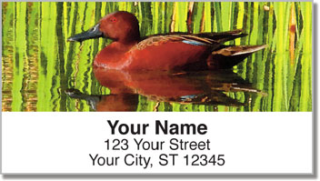 Bulone Bird Address Labels