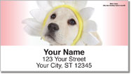 Yellow Lab Pup Address Labels