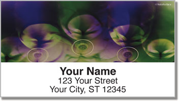 Bacca Wine Address Labels