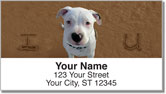 Animal Sand Scribbles Address Labels