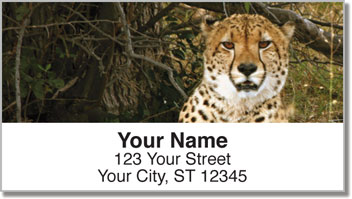 African Wildlife Address Labels