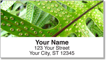 Natural Detail Address Labels
