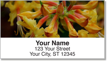 Backyard Flower Garden Address Labels