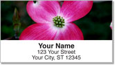 Pink Flower Address Labels