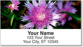 Purple Flower Address Labels