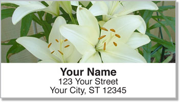 White Flower Address Labels