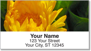 Yellow Flower Address Labels