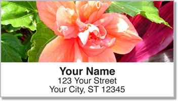 Tropical Plant Address Labels