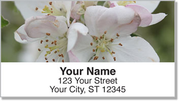 Apple Blossom Address Labels