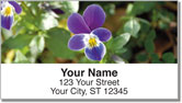 Vivid Violet Address Labels