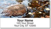 Peaceful River Address Labels