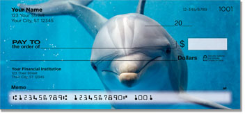 Dolphin Checks