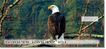 Bald Eagle Checks