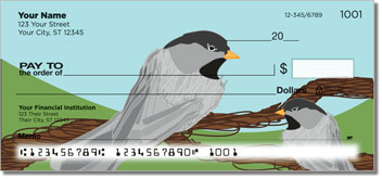 Black-Capped Chickadee Checks