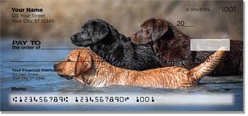Cartoon Labrador Checks