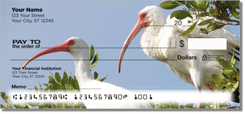 White Ibis Checks