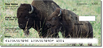 American Bison Checks