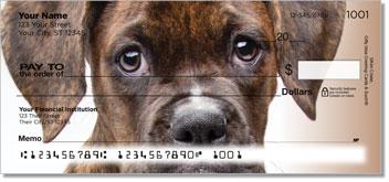 Boxer Pup Checks