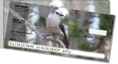 Gray Jay Bird Side Tear Checks