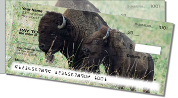 American Bison Side Tear Checks