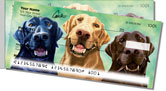 Labrador Retriever Side Tear Checks