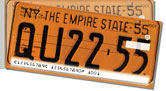 New York License Plate Side Tear Checks