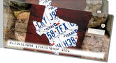 Texas License Plate Side Tear Checks
