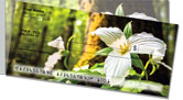 White Trillium Side Tear Checks
